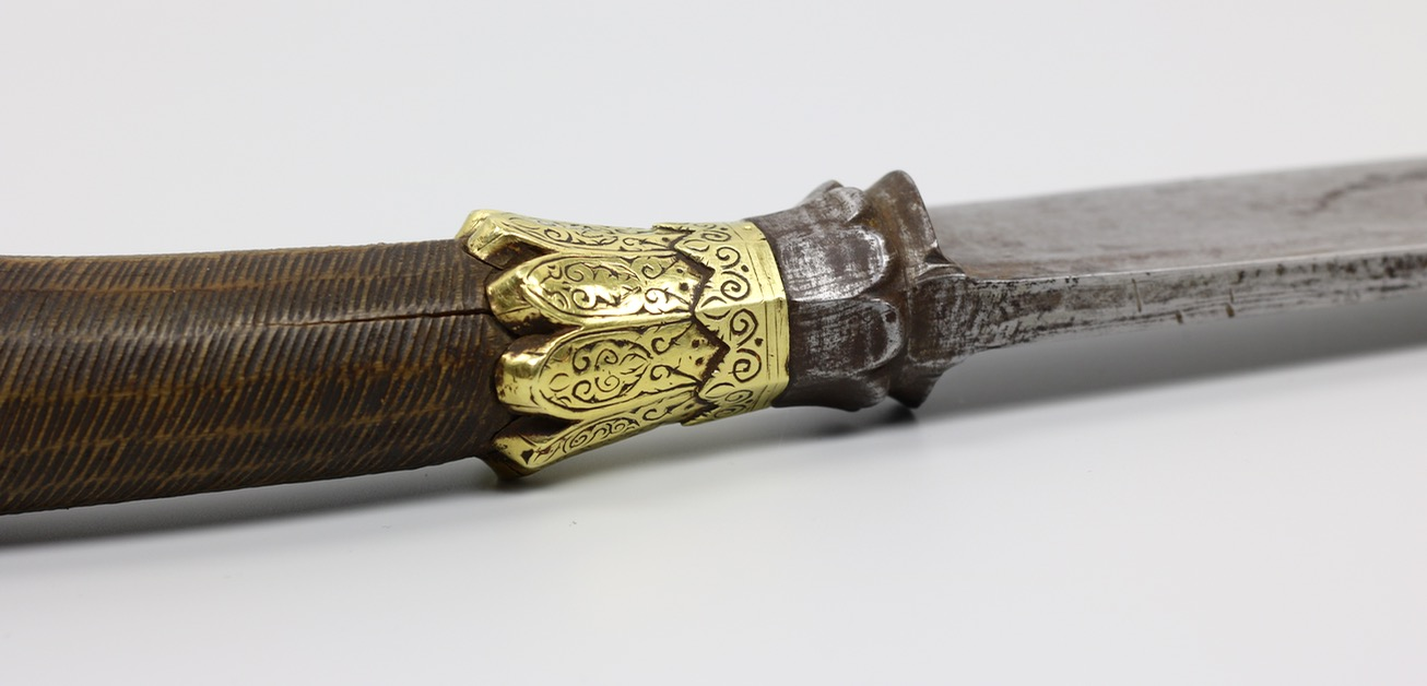 A Sumatran sikin panjang with golden crown